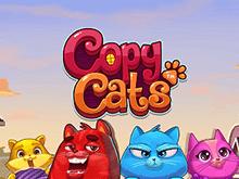 Фан-игра на фишки в азартной игре Кошки-подражатели бесплатно