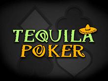 Бесплатно на сайте Текила Покер с джекпотом на аккаунт